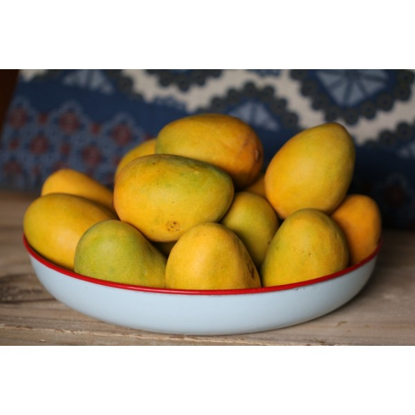 Aam Papad Mango Fruit