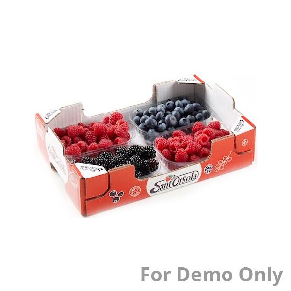 Fresh Fruit Pack